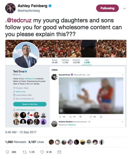 A screenshot posted by Twitter user Ashley Feinberg of the pornographic tweet 'liked' by Cruz's account