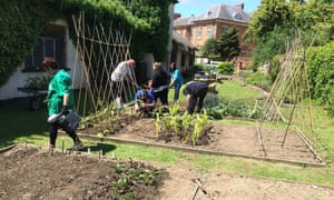 Community allotment at Tredegar House, south Wales