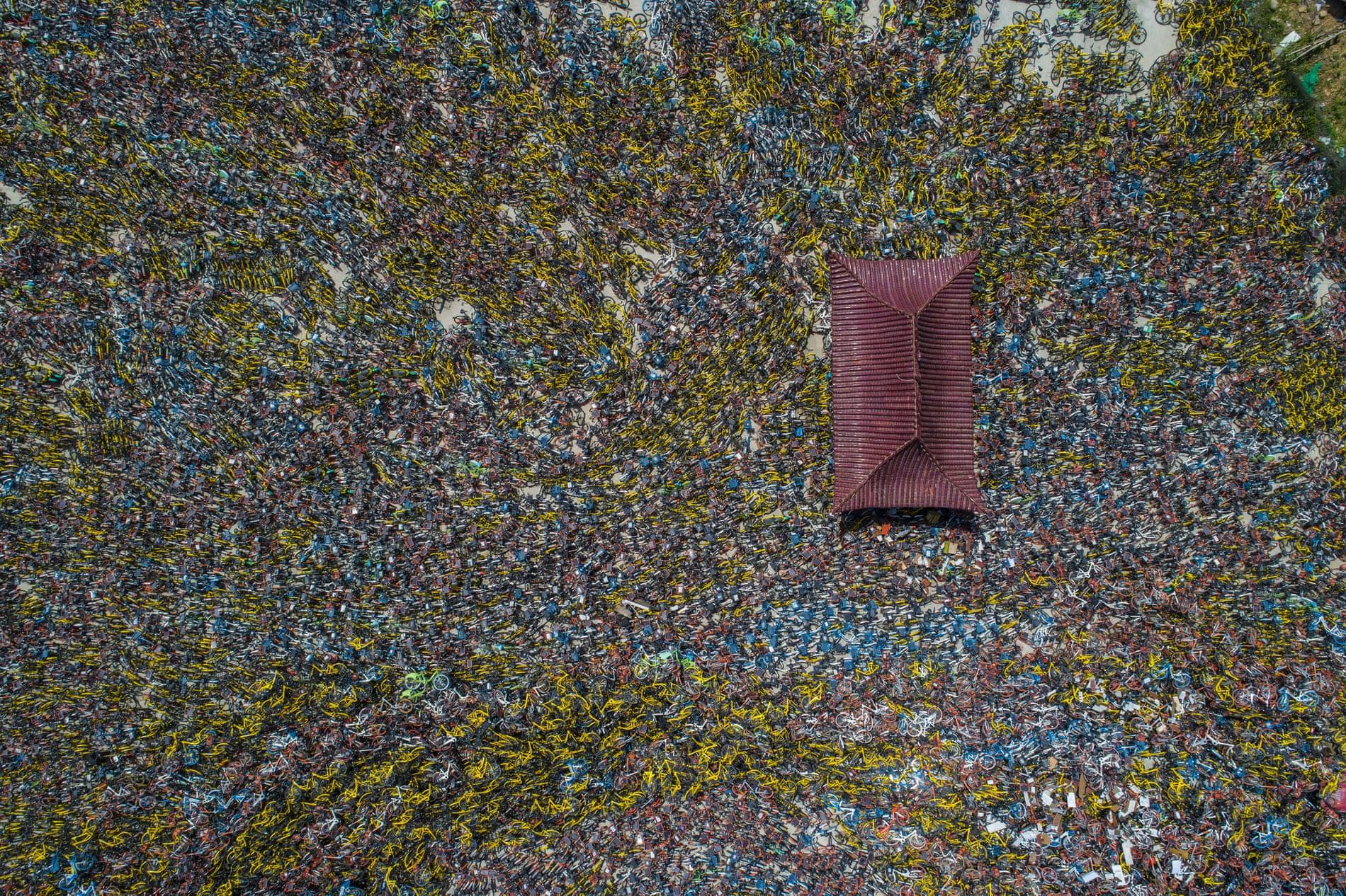 中国自行车墓地意想不到的美丽