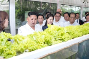 Kim Jong-un visits a national agricultural technology innovation park under the Chinese Academy of Agricultural Sciences in Beijing.