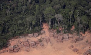 Brazilian Amazon Deforestation Surges To Break August Records