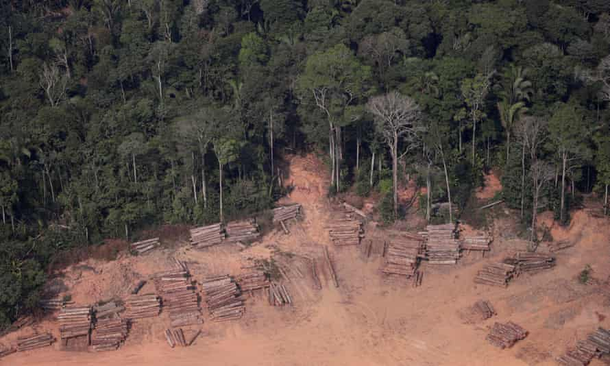 An aerial view of logs illegally cut from the Amazon rainforest seen in sawmills near Humaita, Brazil.