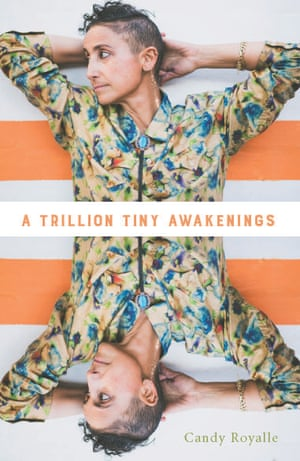 Cover image for A Trillion Tiny Awakenings by Candy Royalle