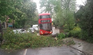 A bus is delayed by a fallen tree in Streatham, south London.