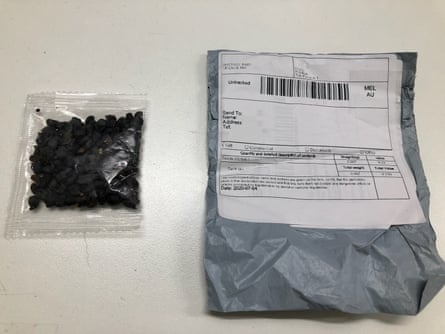 Unidentified seeds sent in the mail