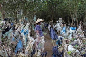 A woman walks through a stunning plastic forest that was created by rising floodwater south of Hanoi.