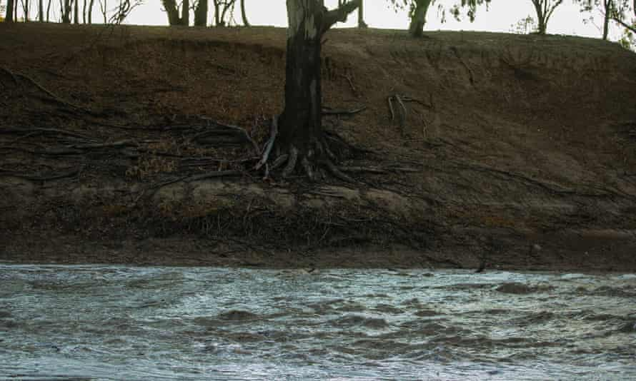 File photo of the Darling-Barka River as a flow of water from upstream arrives in Louth, Australia