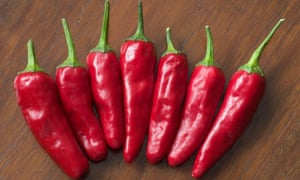 Spice up a Bloody Mary: grow 'Apache' chilli peppers.