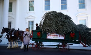 Melania Trump on Monday welcomes the delivery of the White House Christmas tree, an 18.5ft Fraser fir from Oregon.