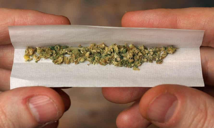A person rolling a cannabis joint