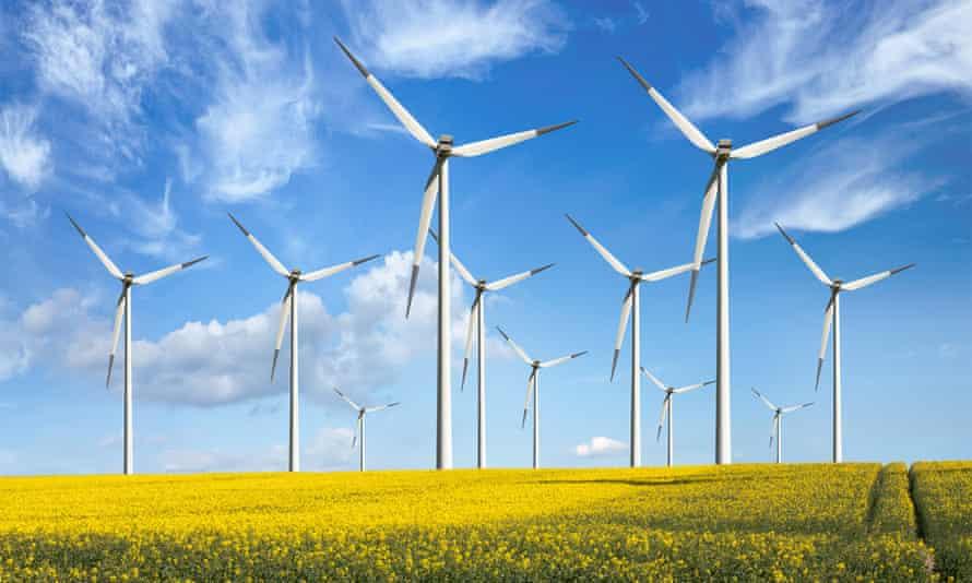 Wind turbines in a field of rapeseed