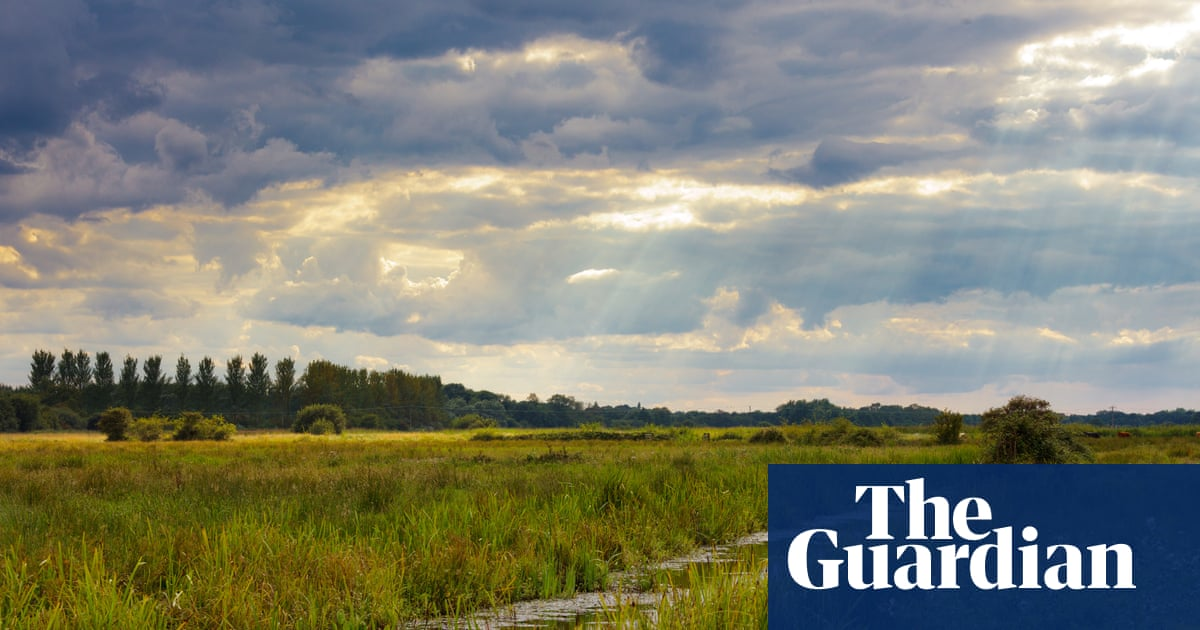 Don't ban dogs from nature reserves | Letters