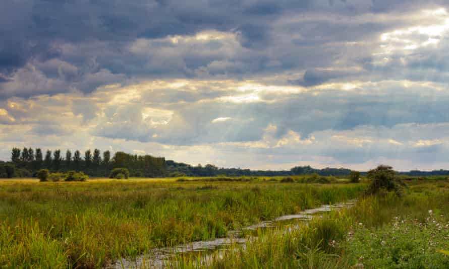 Sun rays pour through heavy clouds over Carlton Marshes nature reserve