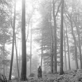 جلد آلبوم فولکلور تیلور سویفت