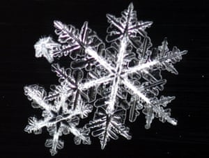 Snowflakes cling to a car window in Alaska. esearch shows that the shape of each flake determines how it falls.