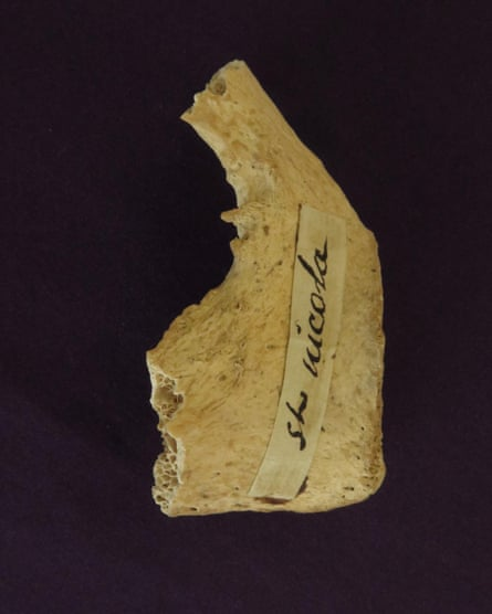Fragment of a bone believed to be that of St Nicholas
