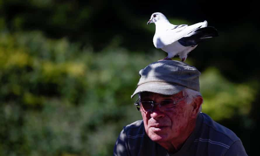 """Xavier Bouget rides his bicycle with a pigeon called """"Blanchon""""on his head."""