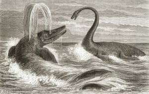 From the very beginning, artists and scientists portrayed ichthyosaurs and plesiosaurs as dire enemies. The reptiles, warring above the waves, became the single most prevalent motif in nineteenth-century paleoart.
