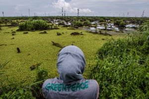 A Greenpeace investigator documents peatland in IOI's oil palm concession in West Kalimantan, Indonesia. This area of the concession suffered extensive fires in 2015.