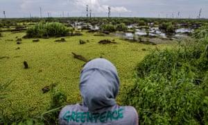 A Greenpeace investigator surveys an IOI palm oil concession in Ketapang, Indonesia