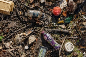 A swan and a duck lie dead among plastic pollution in Manchester