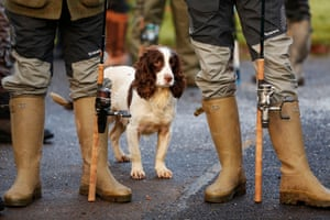 Wellies and a canine fisher