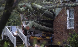 A mother and her infant were killed when a tree fell on their house in Wilmington.