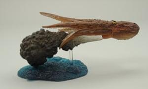 Model of Octopus inking