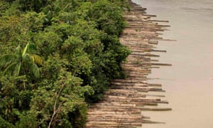 Illegally logged timber in Para state, northern Brazil