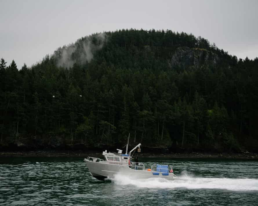 A Lummi Nation police boat used to transport elders and tribal leaders to and from a spiritual ceremony looking for guidance from ancestors followed by an offering of a symbolic, live Chinook salmon for the local orca population, heads back towards Bellingham, on the Puget Sound, Wednesday, April 10, 2019.