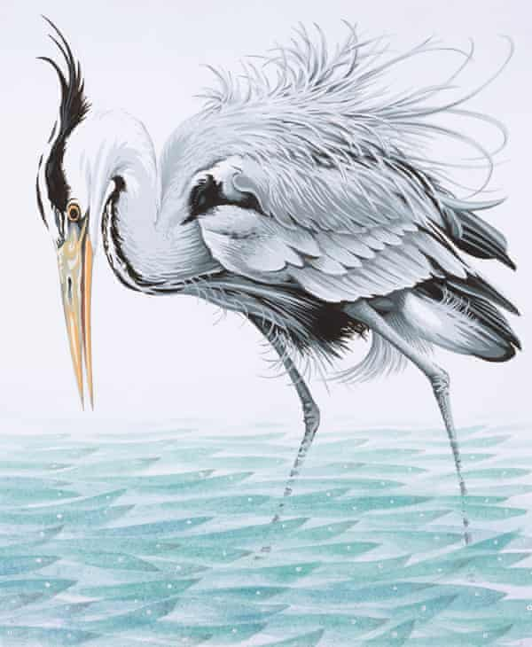 a heron in a fishy stream by neil gower