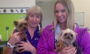 Dog groomers Lianne and Ellie Kent in Queensland with Pistol (left) and Boo who belong to Johnny Depp and his wife Amber Heard.