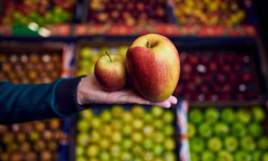 Giant Braeburn apples