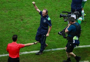 The linesman attempts to tell Martin O'Neill that his celebration is premature.