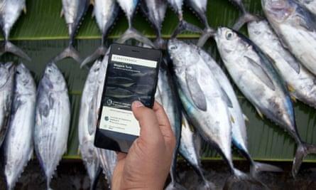 A smartphone and tuna