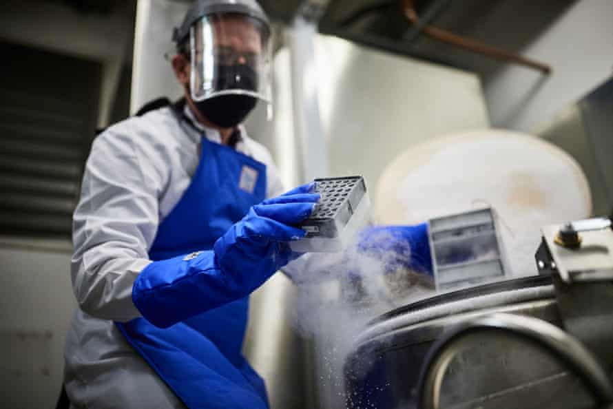 Putting samples in the ultra-low temperature freexers