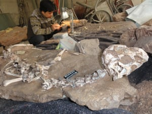 A conservator works alongside the new find.