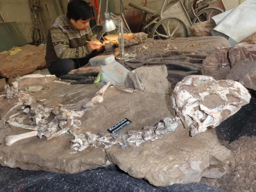 A conservator works alongside the new find.