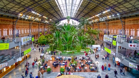 The greenhouse on the concourse of Madrid's Atocha station.