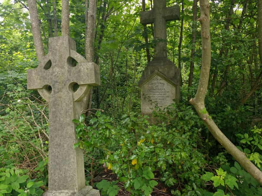Overgrown graves in Camberwell Old Cemetery in south London