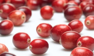 Eating cranberries has long been recommended as a way of avoiding getting a UTI. But does it work?