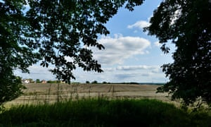 Arable crops in the sunshine in Dunsden, Oxfordshire.