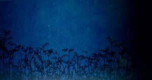Star Field – Bracken, 2008, by Susan Derges