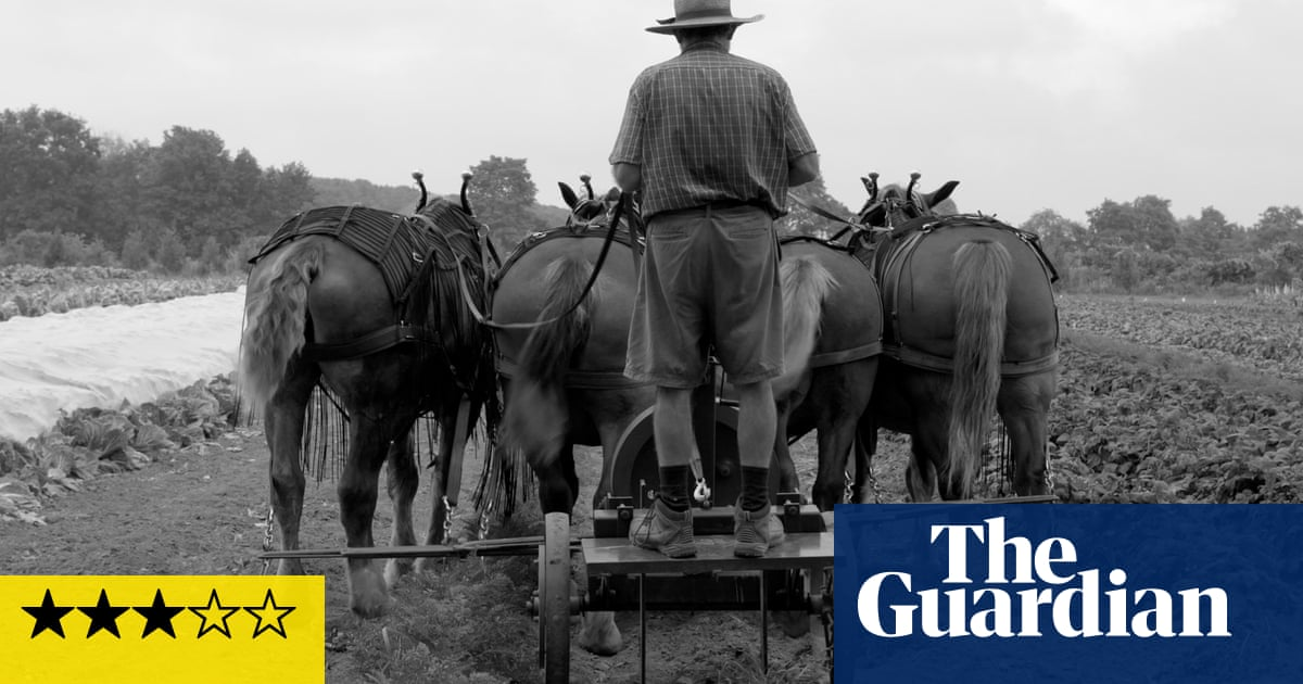 Workhorse review – beautiful but plodding paean to beasts of burden