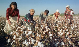 Roane was taken to Uzbekistan in the 1930s to help advance its cotton industry.