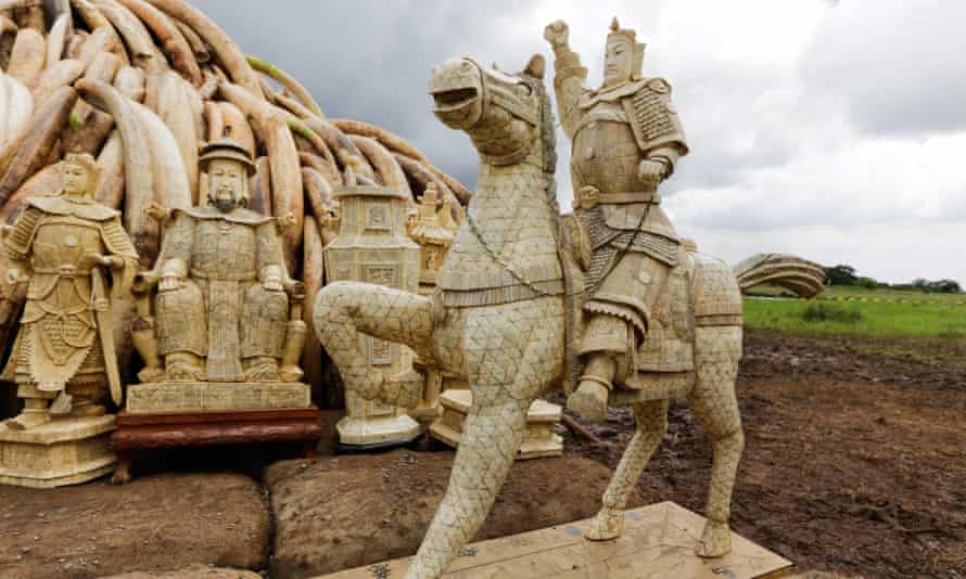 Ivory carvings and tusks, part of 105 tonnes of ivory from Kenya's stockpiles to be burned at Nairobi National Park on 30 April 2016.