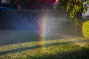 Rainbow in Front Yard Sprinkler Mist, Beverly Hills, California, USA.
