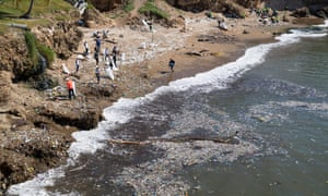 Santo Domingo, Dominican RepublicVolunteers collect plastic waste and garbage on the Fuerte San Gil beach as part of world beach cleaning day, an initiative that is celebrated in more than 123 countries