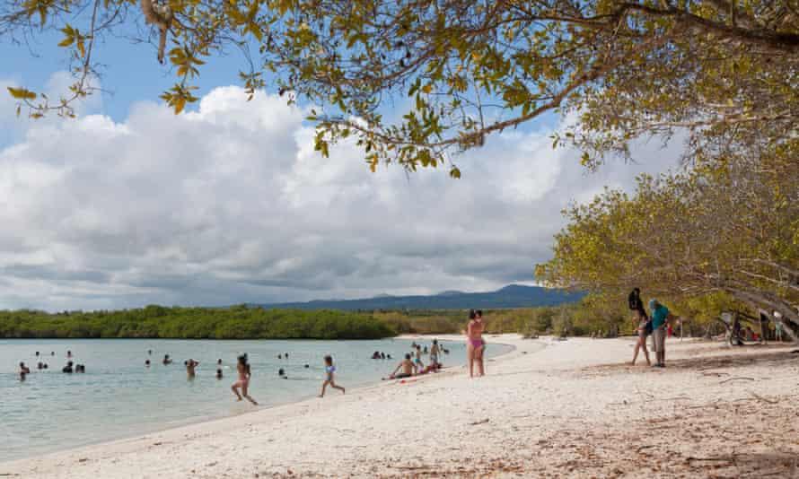 Tortuga Bay beach, Santa Cruz Island, Galapagos Islands, Ecuador