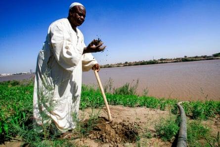 A farmer in the district of Jureif Gharb in Khartoum